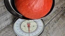 1 kg schwerer orangeroter Hokkaidokürbis auf einer Küchenwaage